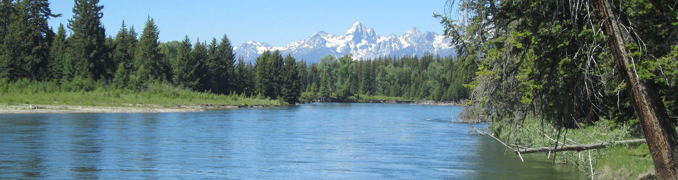 river with mountain in the background