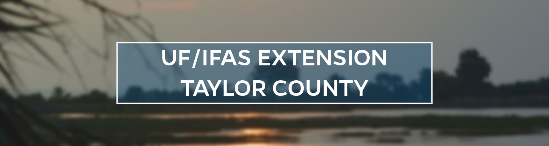 UF/IFAS Extension Taylor County