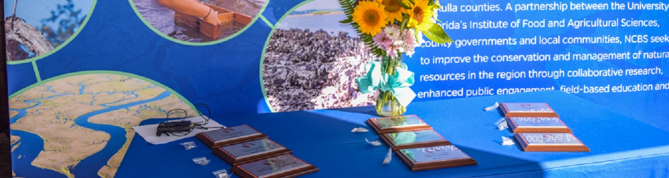 Nature Coast Champion Award Plaques