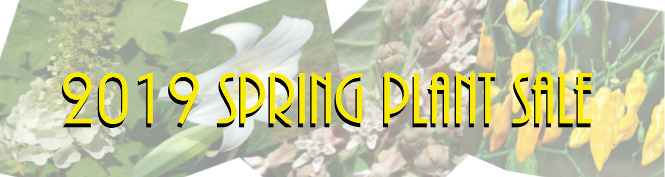 Spring Plant Sale feat 2019