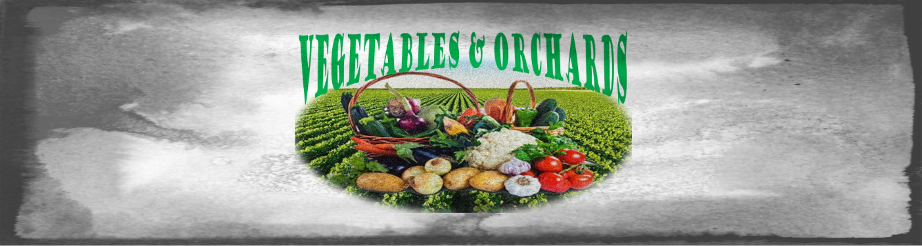 Vegetable Orchards feat 1