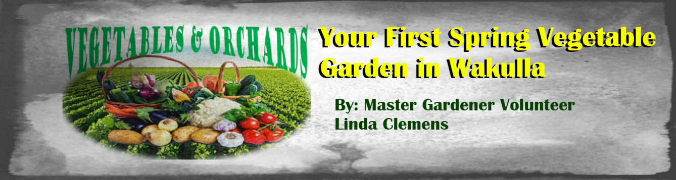 March 2020 MGV Linda Clemens feat