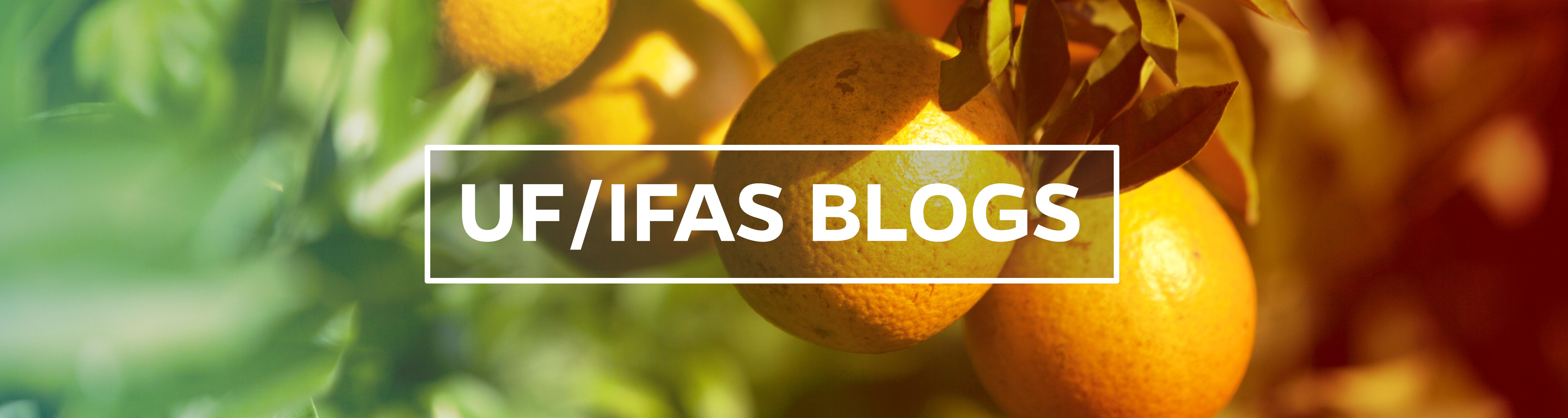 UF/IFAS Global Blogs